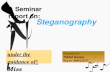 Stegnography final