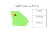 1960 Atlanta MSA Cobb DeKalb Fulton. 1970 Atlanta MSA Clayton Cobb DeKalb Fulton Gwinnett.