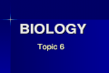 BIOLOGY Topic 6 Topic 6. Topic Outline DNA Structure DNA Structure DNA Structure DNA Structure DNA Replication DNA Replication DNA Replication DNA Replication.