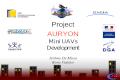 Mini UAVs Development