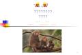 國語教學補充教材 獼猴家族