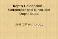 Depth Perception  – Monocular and Binocular Depth cues