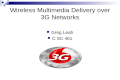 Wireless Multimedia Delivery over 3G Networks