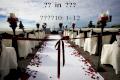 結 婚  in  神の国