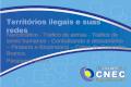 Territórios ilegais e suas redes Narcotráfico - Tráfico de armas - Tráfico de seres humanos - Contrabando e descaminho – Pirataria e Biopirataria – Crime.