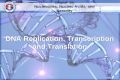 DNA Replication, Transcription and Translation DNA Replication, Transcription and Translation DNA Replication, Transcription and Translation DNA Replication,