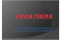 .Creatinina Exp