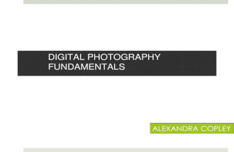 Digital Photography Fundamentals :  Aperture, Shutter Speed and Perspective