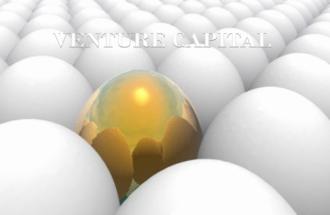 venture capital NOTES 2014