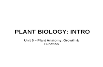 PLANT BIOLOGY: INTRO Unit 5 – Plant Anatomy, Growth & Function.