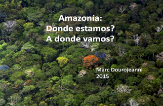 Amazonia, donde estamos a donde vamos?