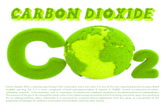 Carbon dioxide Infographic