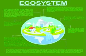 Ecosystem Infographic
