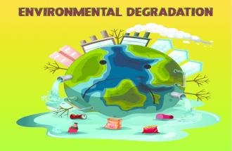 Environmental Degradation Infographic