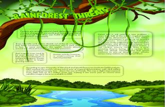 Rainforest Threats Infographic