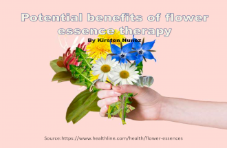 What Are Flower Essences