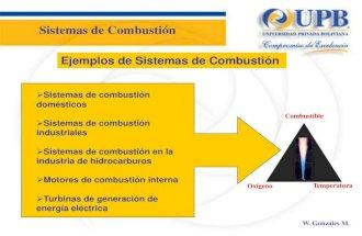 2 elementos basicos en un sistema de combustion