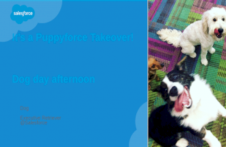 It's a Puppyforce Takeover!