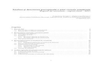 Analiza si¸ descrierea perceptuala˘ a artei vizuale ...imag.pub.ro/pandora/Download/Raport_2017_Final.pdf·