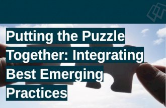 Putting the Puzzle Together: Integrating Emerging Best Pracitces