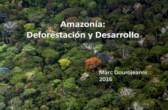 Amazonía, deforestación y desarrollo