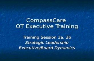 CompassCare OT Executive Training Training Session 3a, 3b Strategic Leadership Executive/Board Dynamics