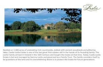 Hotel Castle Leslie Estate